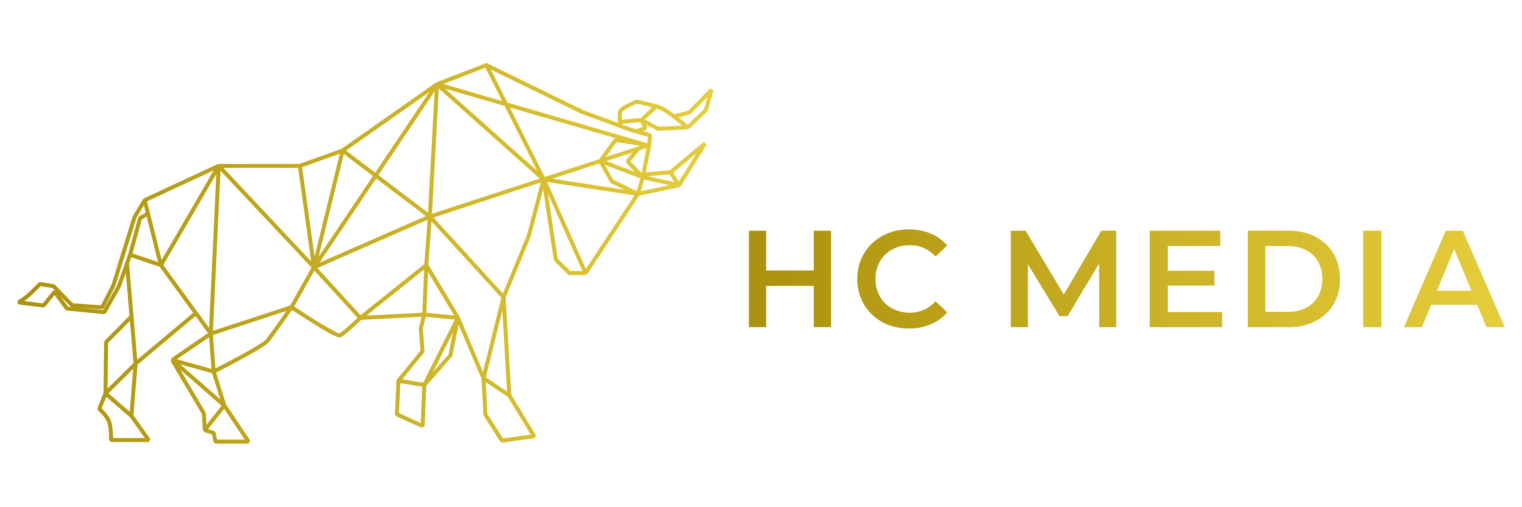 HC Media